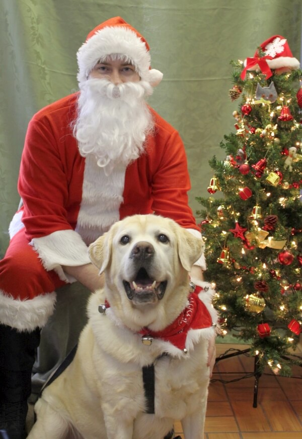 'Here is our 12 year old Lab, Rusty, with Santa.' - Janet N.