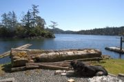 Pet-friendly accommodation in Sooke,   British Columbia: Comfort Cove Cottage