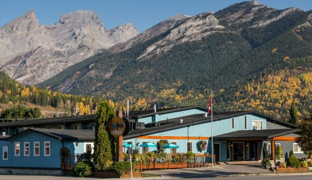 Pets allowed! Fernie Red Tree Lodge is a pet-friendly lodging / accommodation in Fernie.